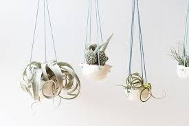 diy clay hanging planters u2013 craftbnb