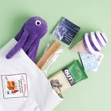 mini monthly mystery box for dogs reviews my subscription addiction