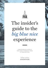 the insiders guide to the big blue nice experience by phillips
