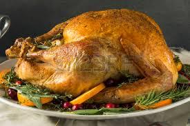 thanksgiving turkey free stock photos royalty free thanksgiving