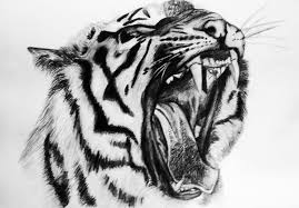 tiger u0027s roar by j s s on deviantart