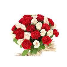 carnations flowers carnations white roses flower faster