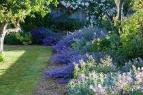 the most amazing landscaping images free for your home