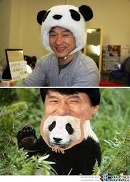 Meme Jackie Chan - jackie chan trolled by willholden meme center