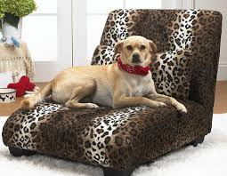 Dog Chaise Gotta Have U0027em Dog Essentials From Global Pet Expo