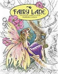 amazon fairy fantasy coloring book 9781944845063