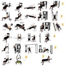 Bench Press For Size Training For Size Best Chest Exercises For Mass
