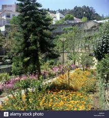 town gardens high walls terraced climbing plants bright flowering