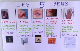 Les 5 sens Période 4 MS  La Maternelle De Wendy