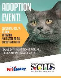 petsmart adoption event 10 14 17 schs u2013 sheboygan county humane