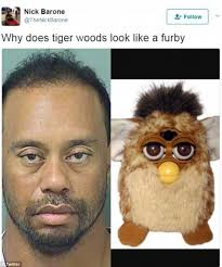 Funny Celebrity Memes - celebrity memes memeologist com