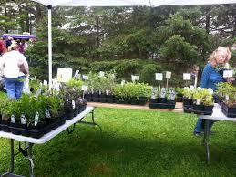 pennsylvania native plants list plant sale events welcome to meadowsweet native plant farm