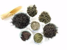 Teh Bubuk gambar cangkir hijau cina herba tanah minum hitam kesehatan
