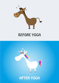 Yoga Meme - yoga unicorn donkey vector art cartoon meme by t anah on deviantart