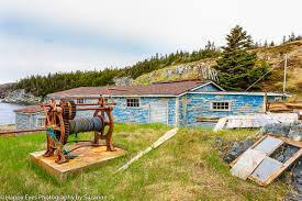 my first trip to newfoundland by suzanne roberts the canadian