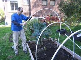 greedy green cold frame construction