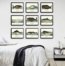 terry fan the whale art print 50 stunning whale art prints fantartic