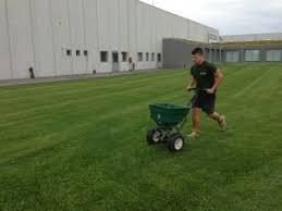 concimazione tappeto erboso concimazione 皓 bottos sementi e fertilizzanti per tappeto erboso