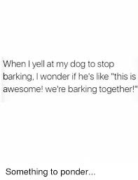 Ponder Meme - when l yell at my dog to stop barking i wonder if he s like this is