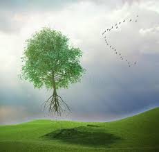 tree flying away with birds stock illustration illustration of