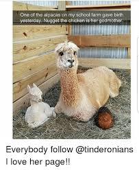 Chicken Meme Jokes - 25 best memes about chicken chicken memes