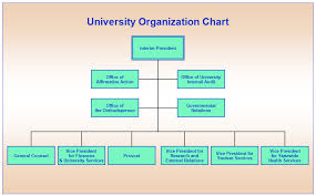 university orgchart png