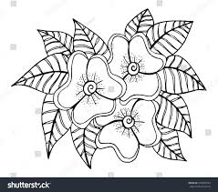 doodle floral pattern black white page stock vector 558963544