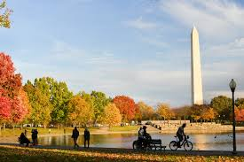 washington dc homes neighborhoods architecture and real estate