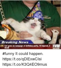 Birthday Meme Cat - breaking news live cat goes on rage at birthday party 19 injured