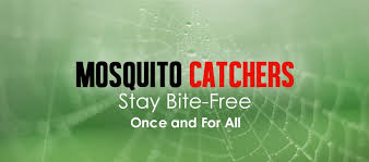 Cutter Backyard Bug Control Reviews by Mosquito Killer Sprays Discover The Top 5 Life Safers For
