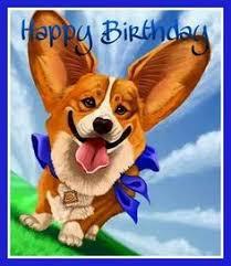 Corgi Birthday Meme - last bing queries pictures for happy birthday corgi meme