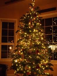 christmas trees with colored lights decorating ideas christmas tree decorations ideas white decorating interior design