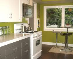 cabinet color ideas for painting kitchen cabinets hgtv pictures