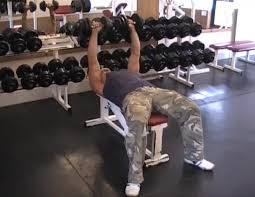 Bench Press With Dumbells - the top 5 exercises for increasing chest mass muscle u0026 strength