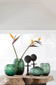 Home Plant Decor 65 Best Glassware Images On Pinterest South Africa Contemporary