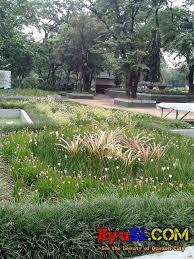 qc memorial circle flower garden photo 3 quezon city memorial