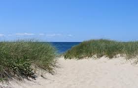 file wellfleet town beach jpg wikimedia commons