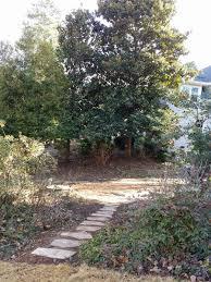 Walled Garden Centurylink by Tara Dillard Stone