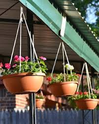 Hanging Flower Pot Hooks Best 25 Hanging Flower Pots Ideas On Pinterest Potted Plants