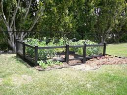 cool vegetable garden design ideas backyard with black wood fences