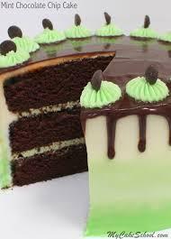 mint chocolate chip cake my cake
