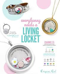 Charms For Origami Owl Lockets - 730 best origami owl ideas images on origami owl