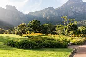 Kirstenbosch Botanical Gardens How To Plan Your Visit To Kirstenbosch National Botanical Gardens