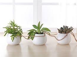 White Hanging Planter by Mkono Hanging Planter With 3 Ceramic Succulent Plant Pots White