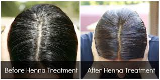 african american henna hair dye for gray hair beetroot juice and henna for natural hair color natural hair dye