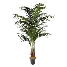 7 kentia palm tree in plastic pot os 26 silks