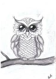 my little owl by paula leimane on deviantart