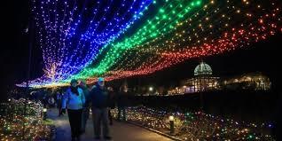 Dominion Lighting 10 Best Christmas Light Displays In Virginia 2016