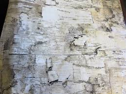 birch tree wrapping paper how to make rustic christmas ornaments the boondocks