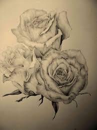 realistic roses outline freespywarefixescom
